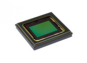 12.4 Megapixel CMOS Sensor