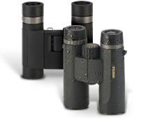 What to Look for in Binoculars